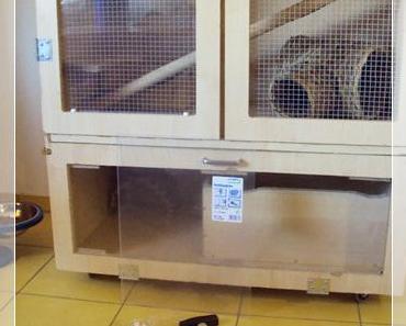 Kleine Bastelstunde: Katzensichere Chinchilla-Voliere