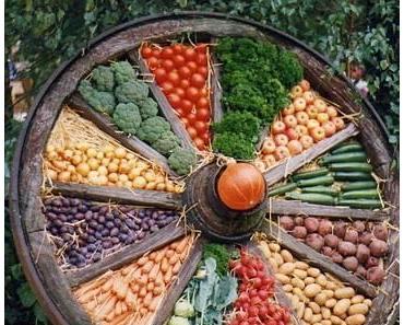 Vegetarische Ernährung – vor allem bei Kindern auf die Nährstoffe achten