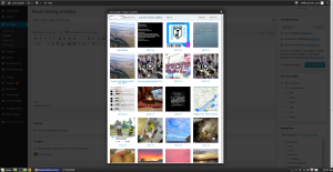 [WordPress] Google+ Bilder in Blogpost einbinden