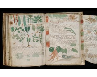 Voynich-Manuskript: Mexiko, Naher Osten, ein Fake?