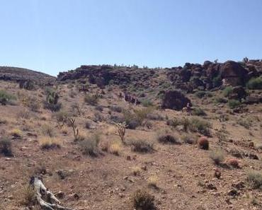 Wandern im Red Rock Canyon