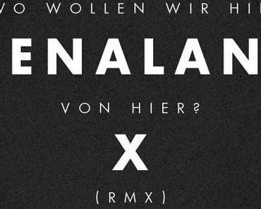 Joy Denalane x Dexter – Wo Wollen Wir Hin Von Hier? (Official Remix) – Free Download