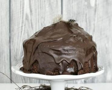 Glück für jeden Anlass - Kakaokuchen mit Zartbitter Glasur