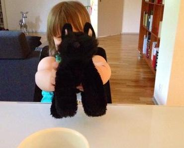 Was ein Plüschhund mit dem Fall Gurlitt zu tun hat