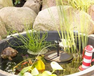 Projekt Garten – Mein Miniteich 💚