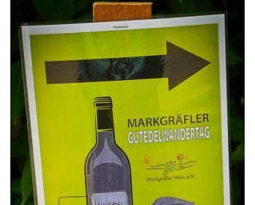 Gutedelwanderung 2014: Die 12 km Genuss-Tour im Markgräflerland