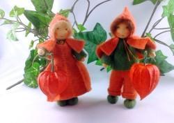 Lampionblumen (Physalis) für den Herbst!