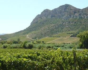 Korsika – Weinbau mitten im Mittelmeer