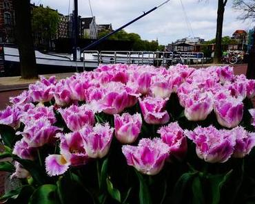 4 Tage in Amsterdam – Part 2