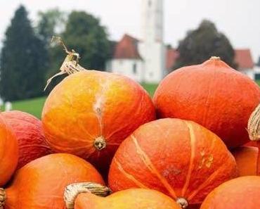 Basic COOK 4#: Kürbispüree und eine Hommage an den Herbst: Apfel-Kürbis-Tarte!