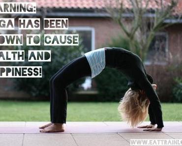 Meine ersten Monate als Vinyasa Power Yoga Teacher
