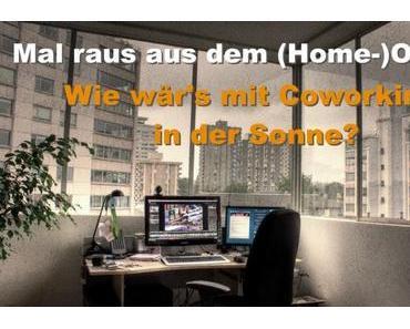 Alternative zum Home-Office: Coworking und Workation unter Palmen