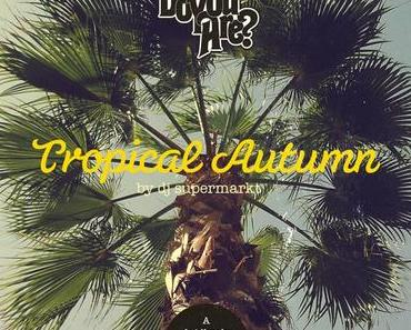 Tropical Autumn 2014 (a laidback Mix Of Modern Sad – Beach – Disco by DJ Supermarkt) [free DL]