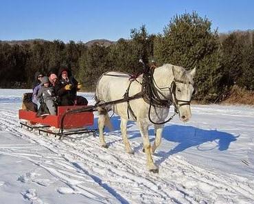 Winterreifen für's Auto von O bis O ?  Weiterhin ohne Crash zur Arbeit!