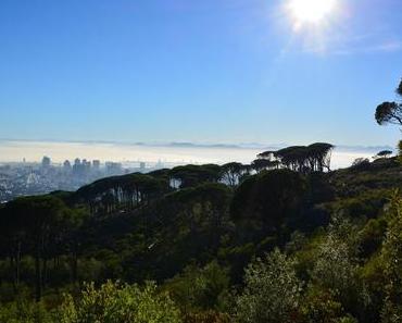 Kapstadt – Top 10 Sehenswürdigkeiten