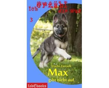 Neu: Ich erzähl dir was 3 – Max gibt nicht auf als fabEbook