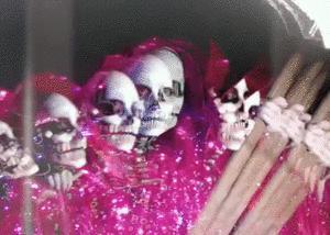 PANDA BEAR MEETS THE GRIM REAPER (neues Album + neue interaktive Website + BoilerRoom Session)