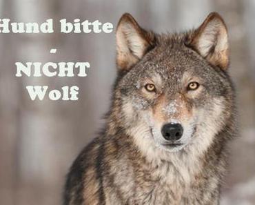 Hund bitte – NICHT Wolf