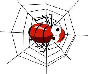 Wenn Spinner Spinnen jagen