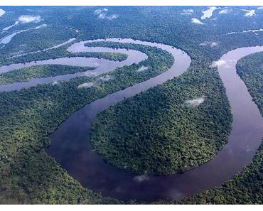 The Rock war nie im Amazonas – Welcome to the jungle!