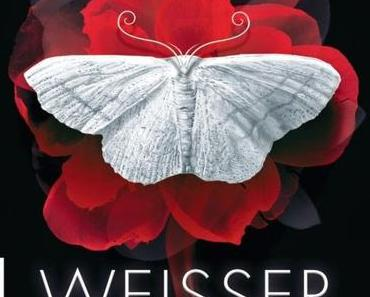 Rezension Holly Black: The Curse Workers 01 - Weisser Fluch