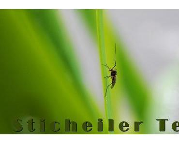 Stichheiler Test – Was hilft gegen Mückenstiche? Wir verraten es…
