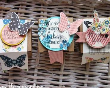 Mini-Geschenkschachteln mit Schmetterlingen