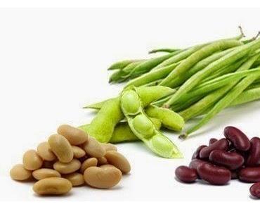 Gesunde Lebensmittel  Bohnen: Der ideale Eiweiss- & Ballaststofflieferant