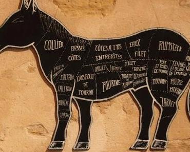 Vom Pferd und seiner gastronomischen Geschichte in Europa!