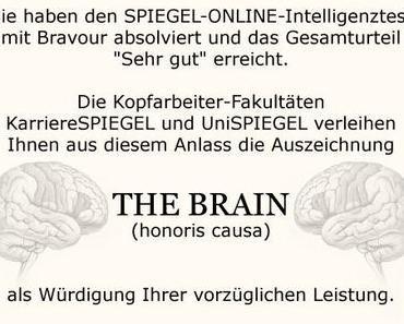 Der enttäuschende IQ-Test bei Spiegel Online