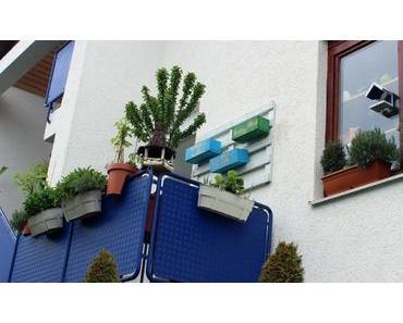Gärtnern ohne Garten auf dem Balkon